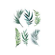 Image result for palm leaf tattoo