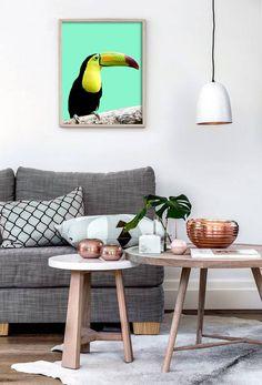 Bird Print Tropical Parrot Wall Art Toucan Bird Tropical