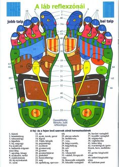 talp reflexzónái Reflexology Massage, Foot Massage, Health And Wellness, Health Tips, Health Fitness, Spiritual Cleansing, Nerve Pain, Massage Therapy, Acupuncture