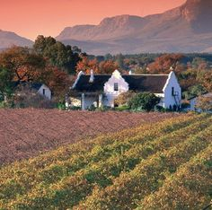 Gorgeous Cape Winelands in South Africa. South Africa Holidays, Cape Dutch, Country Art, Wine Country, Dutch House, Dutch Colonial, Rest Of The World, Adventure Is Out There, Countries Of The World