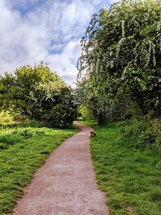 Shrewsbury - waking through park