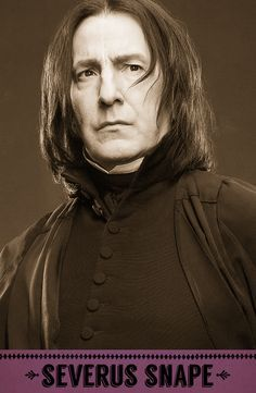 Severus Snape, Potions professor, Defence Against the Dark Arts professor, Head of Slytherin house, briefly Headmaster of Hogwarts.