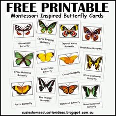 Part 2 - A hands-on Study about Butterflies with FREE PRINTABLE Montessori Inspired butterfly cards from Suzie's Home Education Ideas