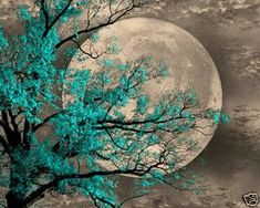 Brown Aqua Blue Tree Moon Wall Art Home Decor Picture