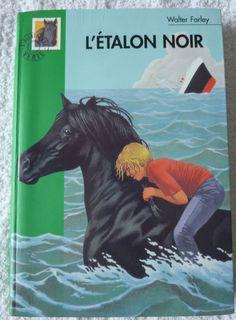 Bibliotheque verte L étalon noir (Livre)