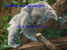 Koala nursery room decor Koala digital art by StellaGreenWordArt