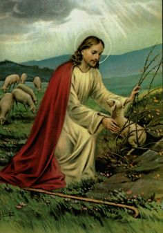 Christ The Good Shepherd, Year Of Mercy, Première Communion, Our Father In Heaven, Special Prayers, Jesus Christus, Christian Images, Salvador, Temple Wedding
