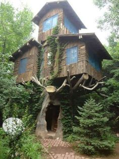 Funny pictures about Three Story Tree House. Oh, and cool pics about Three Story Tree House. Also, Three Story Tree House photos. Bungalow, Cool Tree Houses, Weird Houses, Nice Houses, Dream Houses, Unusual Homes, Little Houses, Play Houses, Cabana