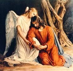 """""""He withdrew about a stone's throw beyond them, knelt down and prayed, 'Father, if you are willing, take this cup from me; yet not my will, but yours be done.' An angel from heaven appeared to him and strengthened him. And being in anguish, he prayed more earnestly, and his sweat was like drops of blood falling to the ground."""" (Luke 22:41-44)"""