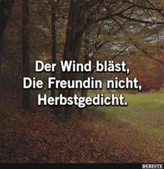 The wind is blowing, The girlfriend is not, autumn poem. Funny Quotes, Funny Memes, Hilarious, Word Sentences, Some Quotes, Man Humor, Word Porn, Really Funny, True Stories