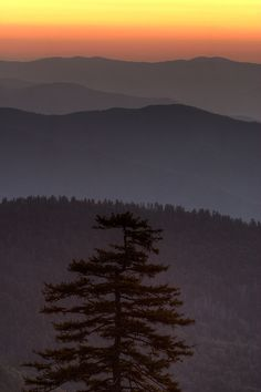 Layered sunrise / Clingman's dome, Great Smoky Mountains National Park