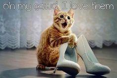 kitty heels