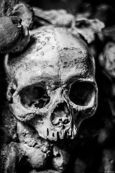 Bildergebnis für catacombs of paris