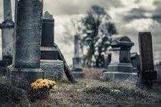 girasoles en el cementerio - Buscar con Google Sunflower Bouquets, Blue Bouquet, Cold Day, Abandoned, Scary, Autumn, Stock Photos, Landscape, Stone