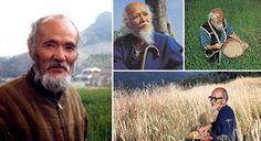 """""""Fukuoka: O agricultor que deixava a Natureza em paz - Seu nome era Masanobu Fukuoka e seu método de agricultura natural é cada vez mais valorizado ao redor do mundo. Ele criou um sistema de cultivo que reproduz e respeita os processos naturais da terra"""""""