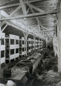 The interior of a wooden prison barrack in Auschwitz II-Birkenau after the liberation.