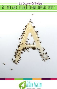 Creepy crawly letter a is for ants activity to do with toddlers and preschoolers. A great activity to go along with The Ants Go Marching and other ant books. This ant experiment is simple to do outdoors and helps reinforce the letter A!