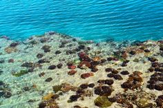 #1327 Islands, Water, Outdoor, Gripe Water, Outdoors, Island, The Great Outdoors, Aqua