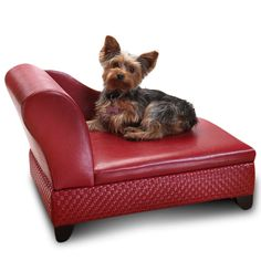 Pet bed shaped just like a chaise lounge... haha! Even has toy storage underneath