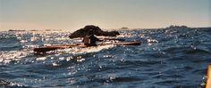 How to Not Really Build a Strip Baidarka Sea Kayak.