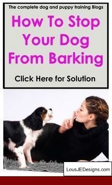 How To Train Your Dog To Stop Barking Unnecessarily And Pics Of
