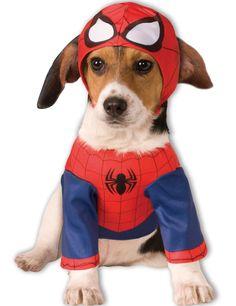 Déguisement pour chien Spiderman™ : Ce déguisement de Spiderman™ pour chien est sous licence officielle Marvel™. Il se compose d'un t-shirt et d'une cagoule. Le t-shirt de l'homme araignée se ferme...