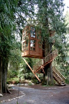 """The """"Trillium"""" treehouse at Treehouse Point in Fall City, WA. I've been inside this amazing treehouse; it has over 80 windows and it is two stories. It has a kitchen, living area, and queen size bed on the second floor."""