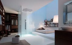 This is just funny. Wake up, step out of bed, boom showered! lol. Cool shower tho. Weird closet type thing.