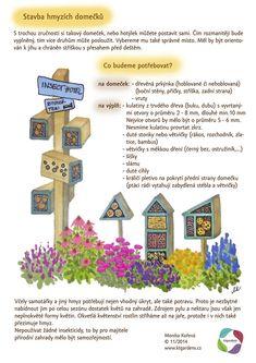 Garden Projects, Plants, Kids, Biology, Gardens, Projects, Children, Garden, Plant