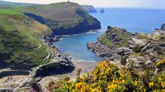 A circular walk along the coastline from Boscastle via the Pentargon waterfall to the seal colony at Buckator, returning along the Valency valley. North Cornwall, Cornwall England, Harbor Lights, South Devon, The Visitors, Costa, Waterfall, Places To Visit, Seal
