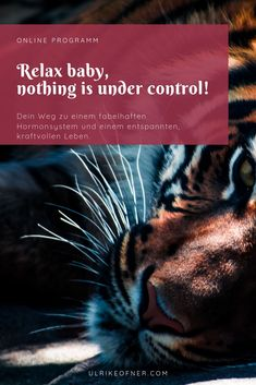 Relax Baby, nothing is under control! Stress, Relax, Baby, Movie Posters, Movies, Round Round, Life, 2016 Movies, Film Poster