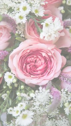 Pink Roses ★ Download more floral iPhone Wallpapers at @prettywallpaper