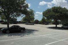 In Florida, it's always about the shade, not the distance #reddit si amor?