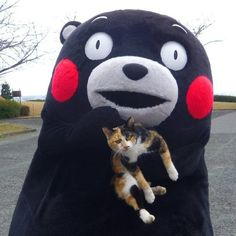 Kumamon 作成: くまモンオフィシャル (made by: Kumamon official)