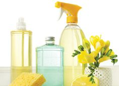 Spring Fever = Spring Cleaning! http://simplesolutionsdiva.com/?p=780 #SpringCleaningTips #Cleaning #Spring