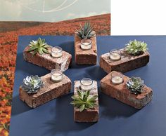 Not this would be great in any room, cactus and candle inside a brick.  Doesn't have to be a red brick either, lots of colors to choose from nowadays.
