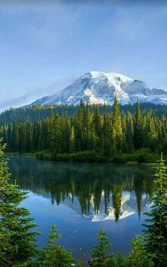 Photo: Beautiful Nature Mt. Rainier National Park