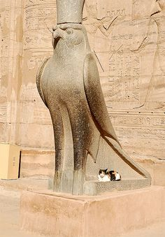 Horus statue with cat at Temple of Edfu, Egypt. one of the oldest and most significant deities in ancient Egyptian religion, who was worshipped from at least the late Predynastic period through to Greco-Roman times