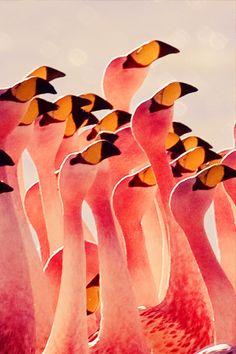 Flamingos, posted via fabforgottennobility.tumblr.com