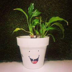 Nuestra #planta está hoy muy contenta porque es #viernes :D Planter Pots, 21st, Instagram Posts, Happy Friday, Painted Flower Pots, Plants