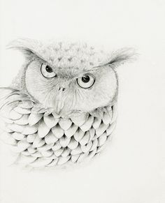 Hey, I found this really awesome Etsy listing at https://www.etsy.com/listing/101682277/hes-mr-owl-a-fine-art-print-of-my