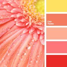 Esta gama de colores calidos te apoyaran para utilizar elemento fuego y tierra lo que constituye un ciclo contructivo en los 5 elementos del feng shui. www.espaciosawa.com