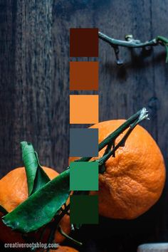 Color palette inspired by bright orange tangerines with deep green leaves. The contrast of the bright orange with the dark grey wood is a modern color scheme. Interior design, graphic design, and Orange Palette, Orange Color Schemes, Color Schemes Colour Palettes, Orange Color Palettes, Modern Color Schemes, Red Colour Palette, Bedroom Color Schemes, Modern Colors, Modern Color Palette