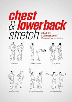 Chest & Lower Back Workout