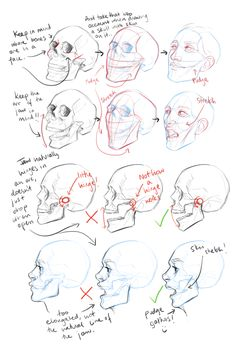 batcii: had a few anons asking for tutorials lately and after trying to organise all the random half guides i've drawn up over the past few months into one tutorial i've just decided to clean up a few and post them separately. So he's some really basic notes on constructing faces/proportions etc.