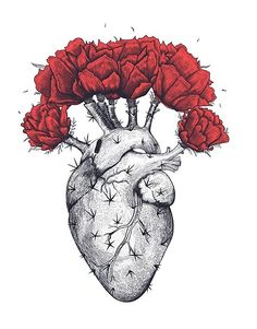 Shop for Noir Gallery Red Floral Botanical Heart Canvas Wall Art Print. Get free delivery On EVERYTHING* Overstock - Your Online Art Gallery Store! Cactus Drawing, Cactus Art, Cactus Plants, Indoor Cactus, Cactus Decor, Painting & Drawing, Heart Poster, Heart Canvas, Watercolor Heart