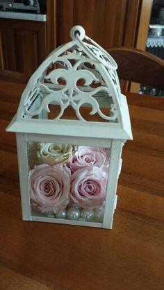 Lanterna con le mie amate rose stabilizzate