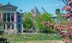 Bourses d'excellence aux élèves internationaux (Quebec)