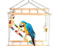 Jucarie de decor pentru colivia de pasari, cu margele si clopotel, pentru papagali sau perusi Cockatiel, Budgies, Wood Ladder, Conure, Parakeet, Love Birds, Cute Baby Animals, Pet Supplies, Cute Babies