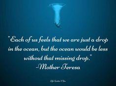 Drop in the ocean....